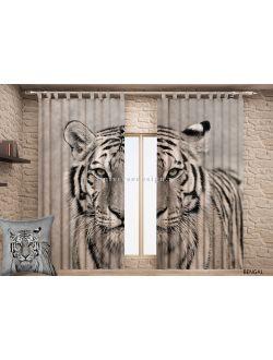 Бенгальский тигр DDW 678 - 20
